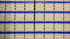 bedrijfsbeeld-pluimveebedrijf-ekkelkamp-15