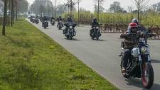 Bernard van Stroe-6874